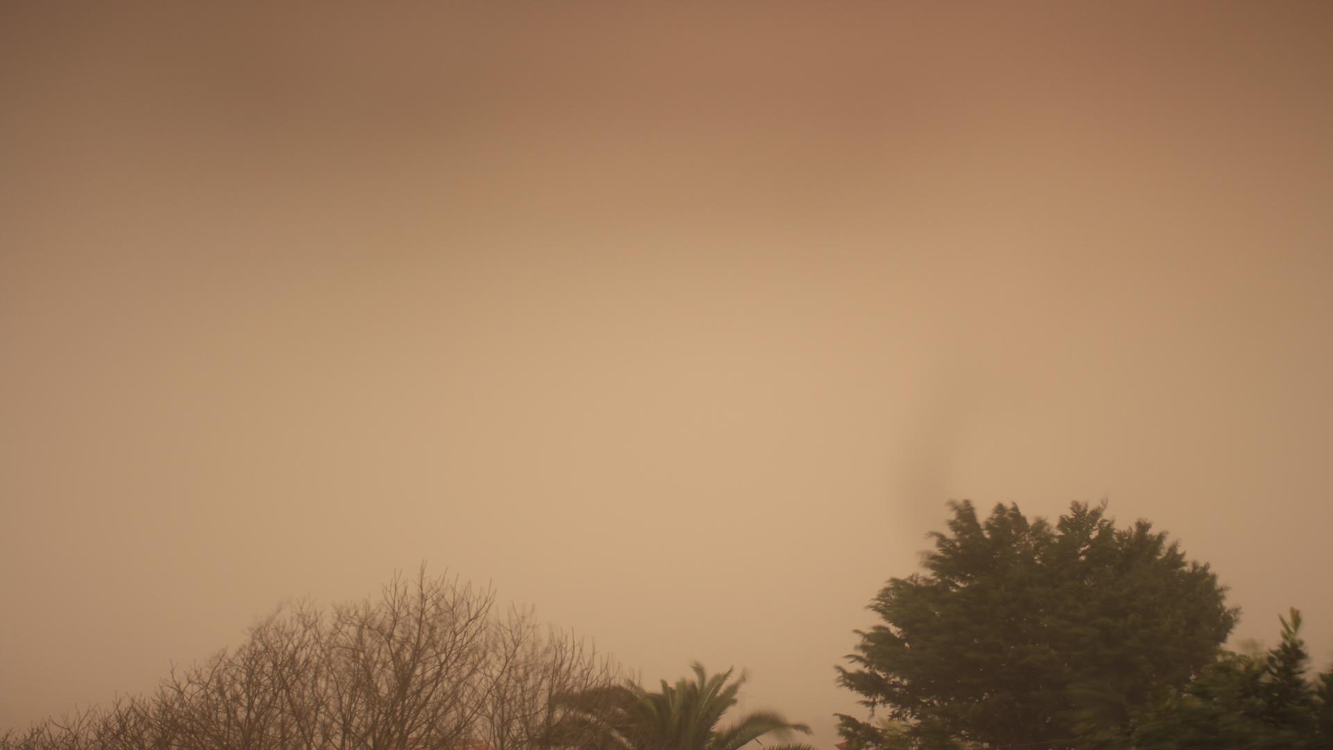 photo:Windy Webcams;desc:Aeropuerto Tenerife Norte desde el Ortigal