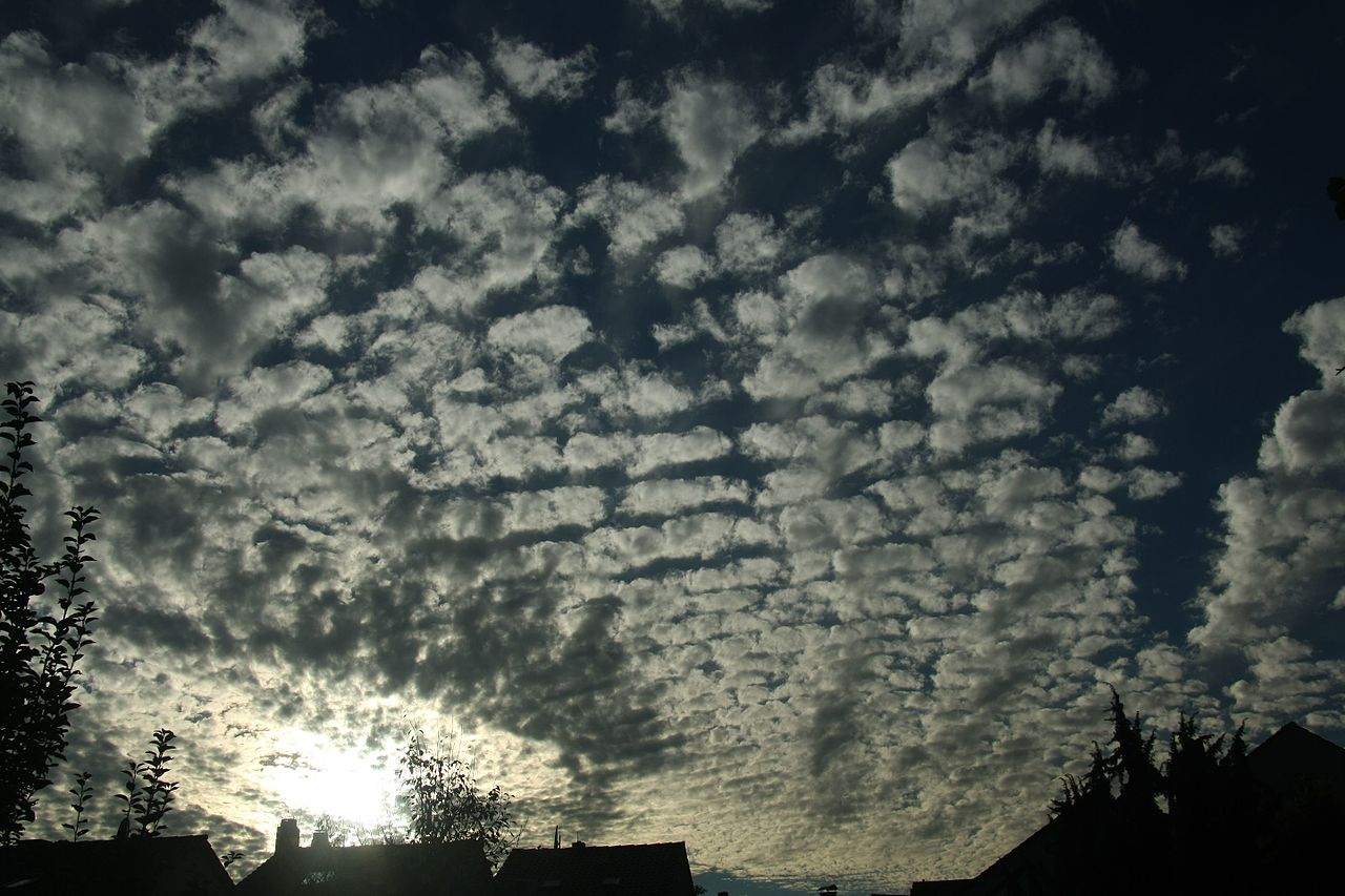 photo: GerritR;desc: Altocumulus stratiformis cloud classification mid-level.;link: https://commons.wikimedia.org/wiki/File:Altocumulus_stratiformis_perlucidus_undulatus_virga.jpg;licence: cc;