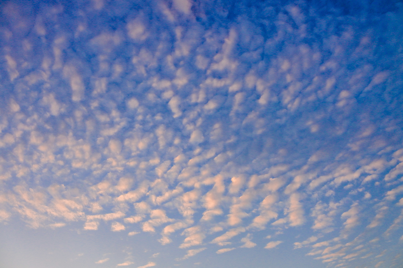 photo: pxhere;desc: Altocumulus cloud classification middle level.;link: https://pxhere.com/en/photo/1581403;licence: cc;