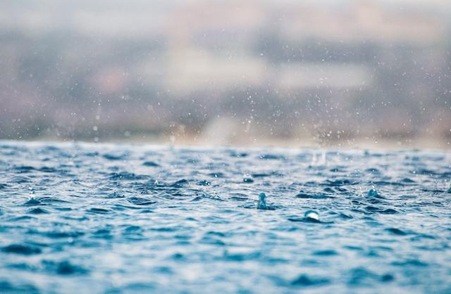 Photo by: Max; desc: rain; licence cc