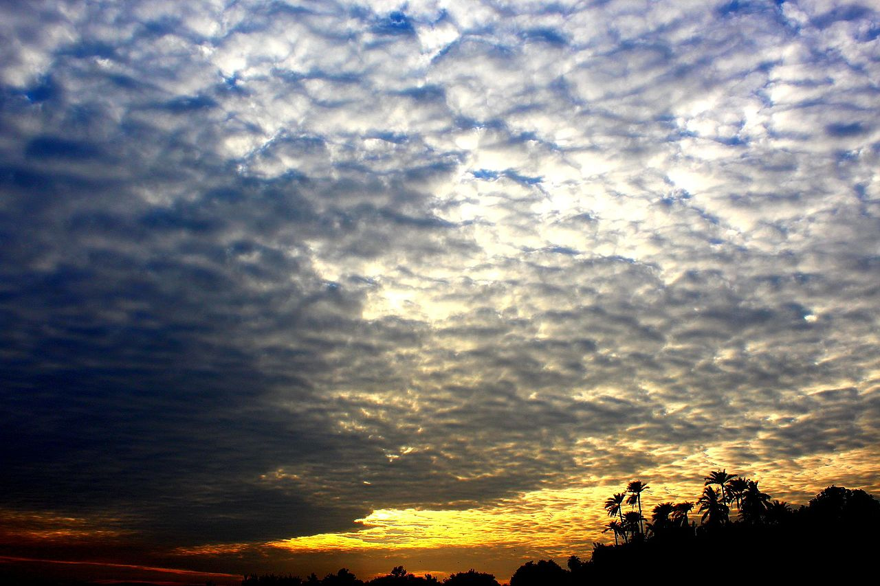 photo: He is sunny;desc: Altocumulus cloud classification middle level.;link: https://commons.wikimedia.org/wiki/File:A_Beautiful_cloud.jpg;licence: cc;